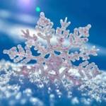 sniezynka2